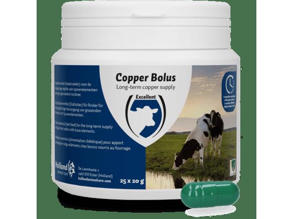 Copper Bolus