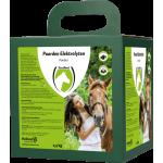 Horse Electrolytes Poeder met B2